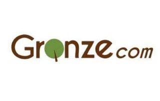 Gronze